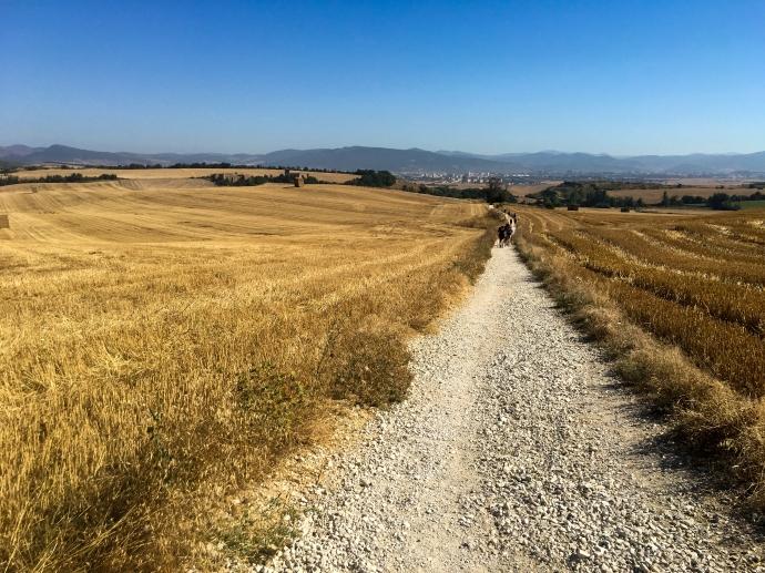 Camino Trail IMG_1458 copy