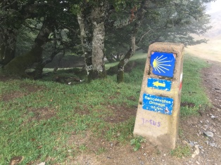 Way Marker to Roncesvalles